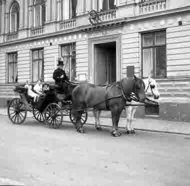 Hästdroska BD 1906 på Södra långgatan. 5/6 1956