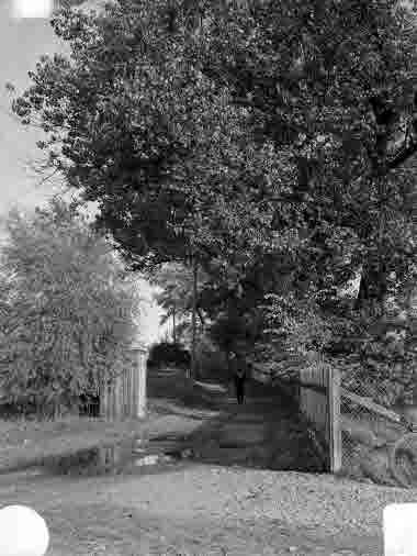 Stora Dammgatan vid Krusenstiernska trädgården 1939